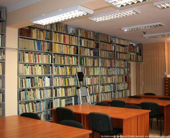 Biblioteka Jaworzno:  Wakacyjne skakanie na dywanie